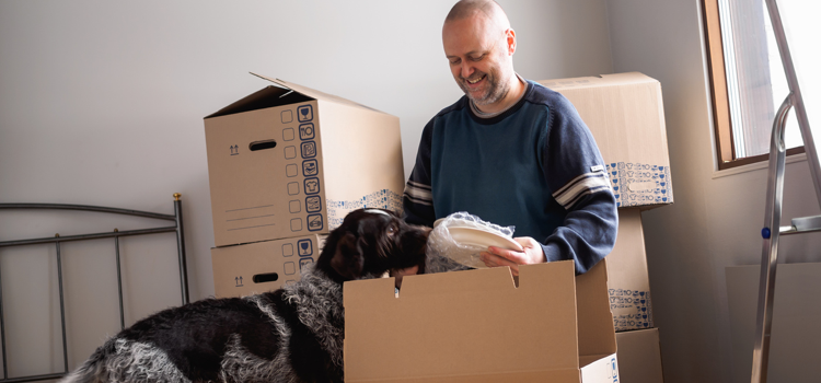 Renting to tenants with pets_2.png