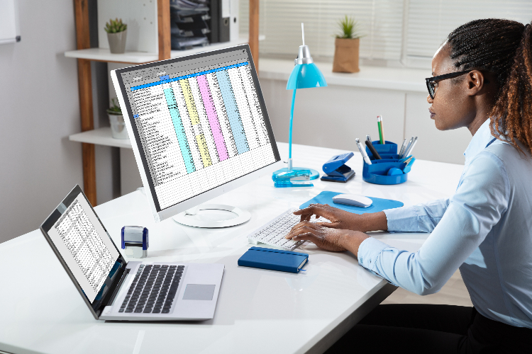 businesses woman using spreadsheet
