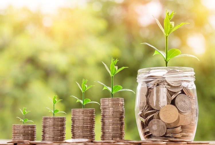 money and plant investment